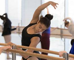 Dance Curriculum - dancer at barre