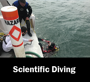 Image of diver down flag