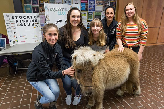 five girls with mini horse